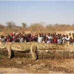 Encontrado en Filipinas cocodrilo gigante de 7 metros de largo