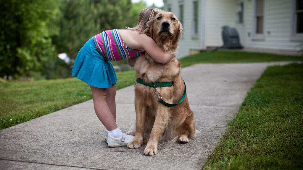 por que los perros viven menos que las personas 2