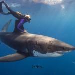 ¿Cuál es la mayor profundidad de los océanos?