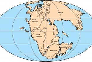 ¿Cómo sería la vida en Pangea?