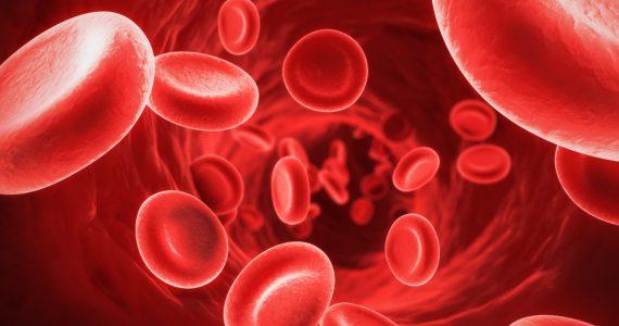Aumentar los glóbulos rojos